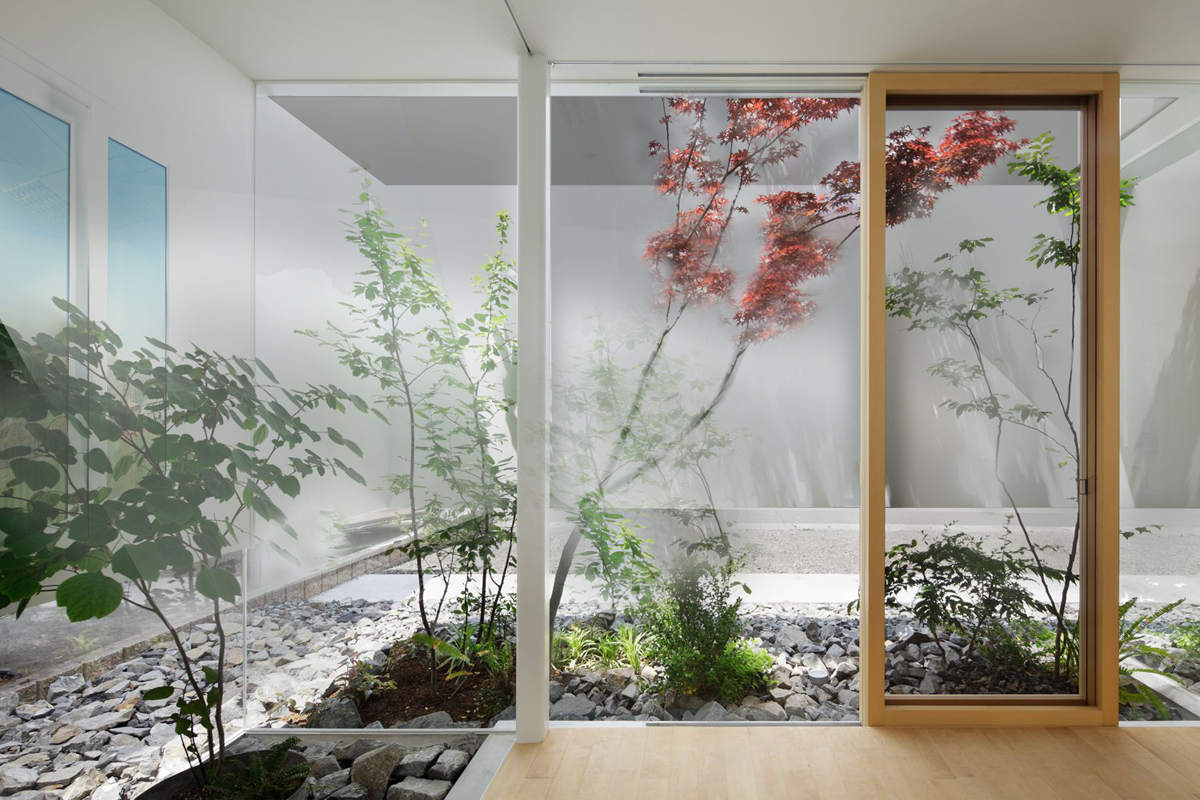 """Ristrutturazione """"Green"""": come portare il verde in un appartamento senza balconi"""
